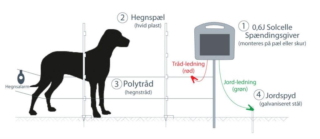 Elhegn til beskyttelse af hund med spændingsgiver