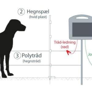 Elhegn til hund