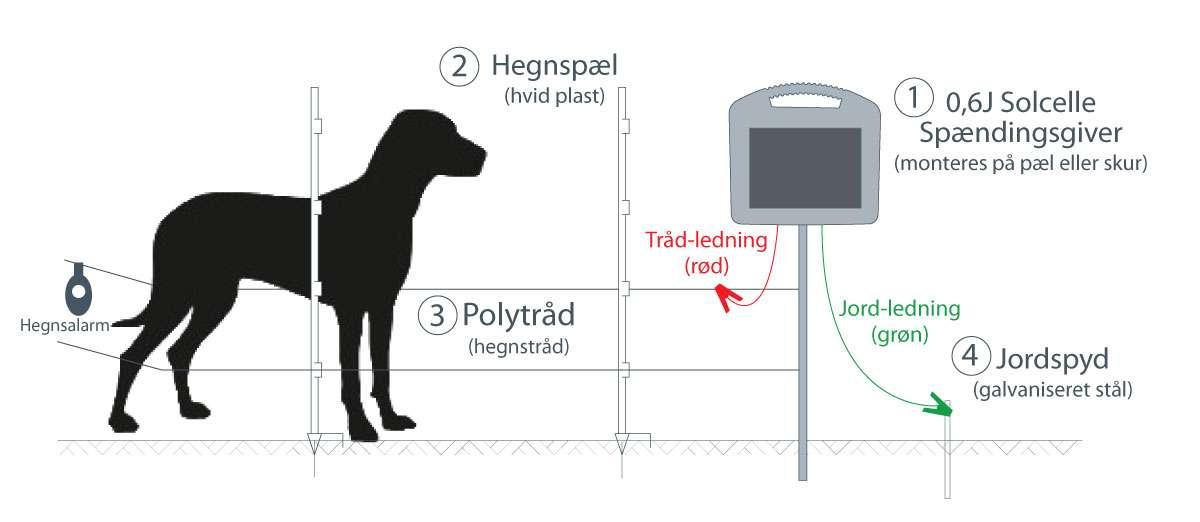 Elhegn til hunde