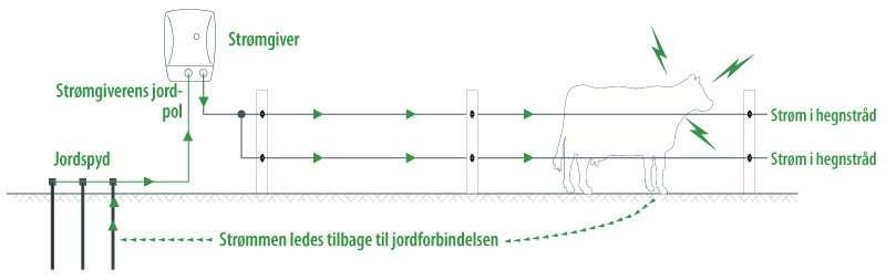 Jordforbindelse til elhegn