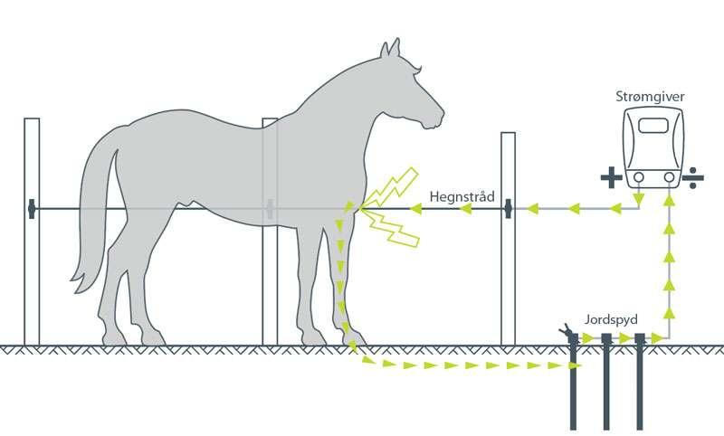 Guide til opsætning af elhegn