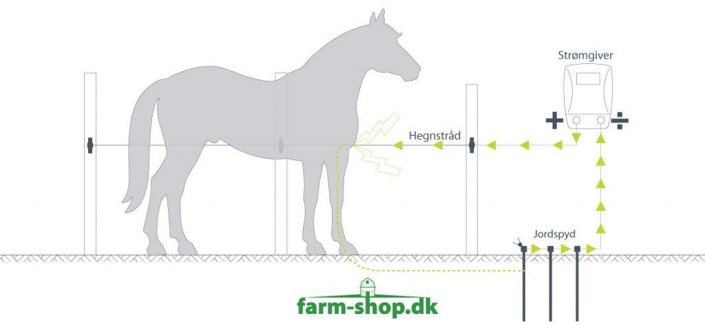 Opsætning af elhegn til heste